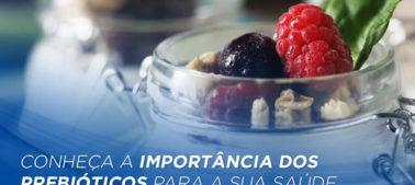 Conheça a importância dos prebióticos para a sua saúde